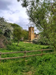 Rothwell pastures, view to church