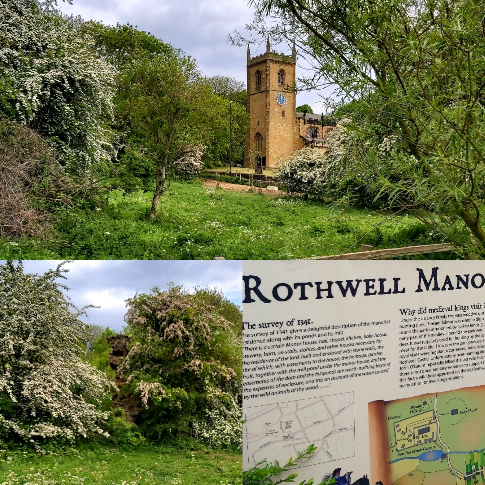 Rothwell-pastures